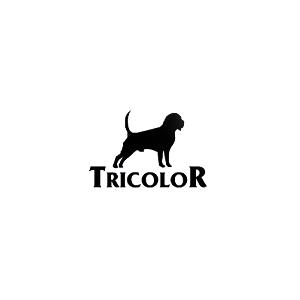Karma dla Amstaffa - Tricolor